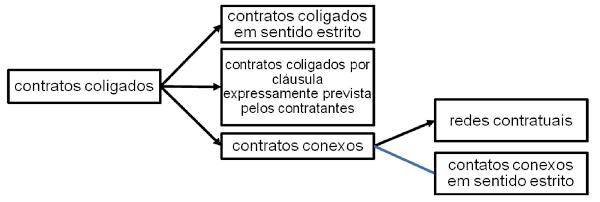 Contratos Coligados RXL